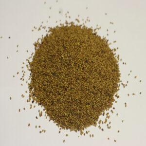 graines à germers Alfalfa Bio