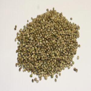 graines de chanvre Bio